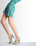 Woman legs in fashion dress and high heels, outfit Royalty Free Stock Images