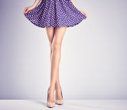 Woman legs in fashion dress and high heels, outfit Stock Photos