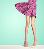 Woman legs in fashion dress and high heels, outfit Royalty Free Stock Image