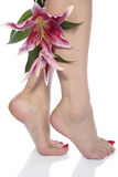 Woman  legs and flowers  over white background Royalty Free Stock Photos