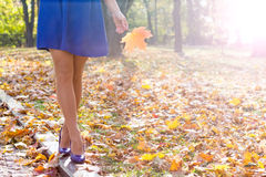 Woman legs in the park Royalty Free Stock Images