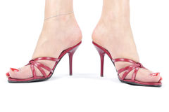 Woman legs with red  heel shoes Royalty Free Stock Images