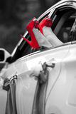 Woman legs with a red shoes. In a car. black and white royalty free stock photography
