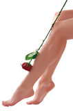 Woman legs with rose Royalty Free Stock Photos