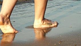 Woman legs walking on golden sand beach. 4K. UHD stock video footage