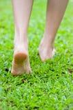 Woman legs walking Stock Photography