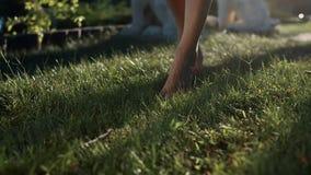 Woman Legs Walking On Green Grass stock video footage