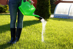 Woman (only legs) watering lawn Royalty Free Stock Images