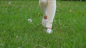 Woman legs in white run up, kick dandelion, florets fly away stock video