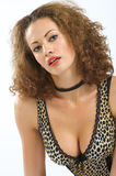 Woman in leopard lingerie  Royalty Free Stock Images