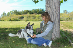 Woman Letting her Dog Read a Book Stock Photo