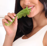 Woman with lettuce leaf Stock Image