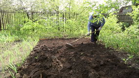 The woman leveled the soil with a rake stock video