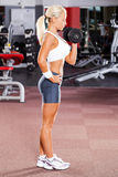 Woman lifting dumbbell Royalty Free Stock Photo