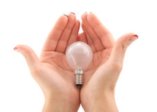 Woman with light bulb in hands. Woman's hands holding a light bulb Royalty Free Stock Photo