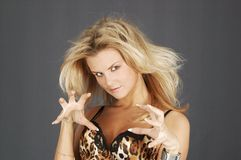 Woman like leopard. Sexy blond woman is plaing leopard role Royalty Free Stock Photos