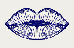 Woman lip mouth kiss Royalty Free Stock Images