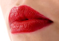 Woman lips Royalty Free Stock Photos