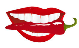 Woman lips with pepper Stock Photo
