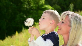 Woman and the little boy blow on a big dandelion. The young woman and the little boy blow on a big dandelion stock video