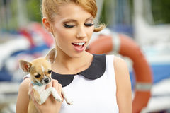 Woman with little chihuahua outdoor Stock Images
