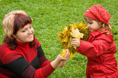 Woman and little girl collect maple leafs In park. In autumn stock image
