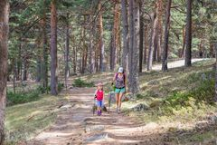 Woman and little girl hiking on a path in forest near to Madrid royalty free stock photography