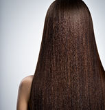 Woman with long brown straight  hair. Rear view Royalty Free Stock Photography