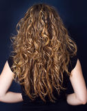 Woman with long curly hair Stock Image