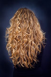 Woman with long curly hair Royalty Free Stock Image