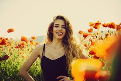 Woman in field of poppy seed royalty free stock photo