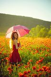 Woman in field of poppy seed with umbrella. Woman with long curly hair in red dress hold pink umbrella in field of poppy seed flower on green stem on natural royalty free stock photos
