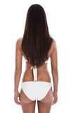 Woman with long dark hair from the back - isolated - body Stock Image