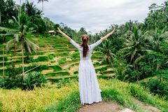 Woman in long dress enjoys rice terrace view in Bali with raised arms. Indonesia Stock Photo