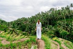 Woman in long dress enjoys rice terrace view in Bali. Indonesia Royalty Free Stock Image