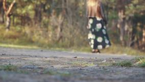 Girl in a long dress with flowers walk on the ground road. Woman walking outdoors. Woman in a long dress with flowers walk on the ground road stock video footage