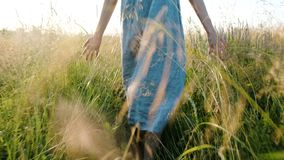 Girl in a long dress walks in a field with tall grass at sunset, hands touch the grass, camera movement