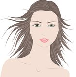 Woman with long hair Stock Image