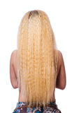 The woman with long hair on white Royalty Free Stock Image