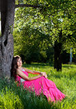 Woman in a long pink dress. Beautiful young woman in a long pink dress sitting on grass under a tree Royalty Free Stock Photography