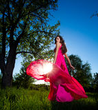 Woman in a long pink dress Stock Photos