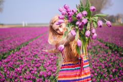 Woman with long red hair wearing a striped dress holding a bouquet of purple tulips flowers on background on purple tulip fields royalty free stock photo