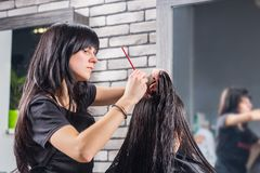 Woman with long wet hair waiting for haircut while female profes. Sional hairdresser combing her hair, sitting in armchair in beauty salon Royalty Free Stock Photos