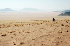 Woman look at the desert. Desert Mountains background. Namibia, Deadvlei, Sossuvlei Stock Image