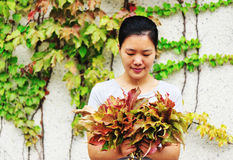 Woman look at ivy leaves Royalty Free Stock Image