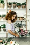 Woman looking at amazing bouquet while working in flower shop royalty free stock photo
