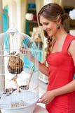 Woman looking at birds Stock Photos