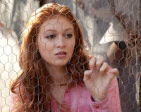 Woman Looking Through Chicken Wire Stock Photos