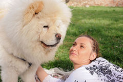 Woman is looking at a chow chow dog with love Stock Photography