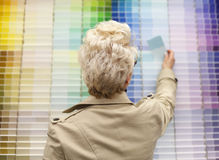 Woman looking at color swatches. Stock Photography